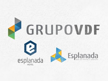 Website Grupo VDF